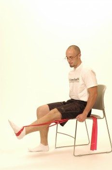 Knee extension_exercise_image