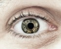 http://www.dreamstime.com/stock-photo-male-eye-macro-closeup-eyelid-eyelashes-interesting-iris-pattern-image39642330